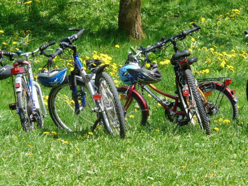 Pomysł na aktywność fizyczną? Wycieczka rowerowa!
